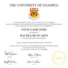 FAKE DIPLOMA TEMPLATE // D28 [University of Calgary Replica]