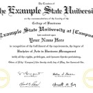 FAKE DIPLOMA TEMPLATE // D03 [California State University Style]